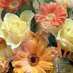 お祝いの花の贈り物とは?種類や花言葉・胡蝶蘭や開店の場合など
