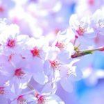 4月の服装について気温と地方別まとめ【東京・大阪】
